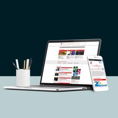 Sito web portale APA realizzato con struttura e grafica personalizzata