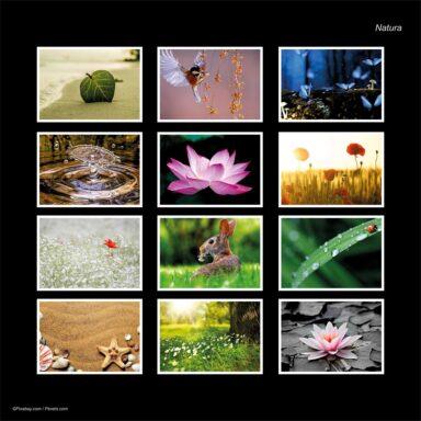 Calendario da muro A4: tema fotografico: Natura