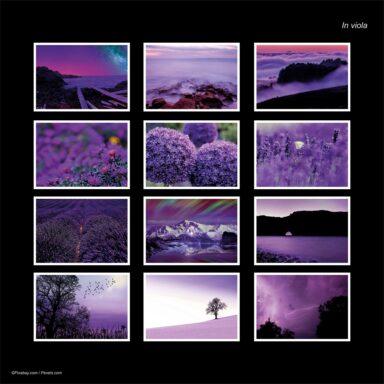 Calendario da muro A4: tema fotografico: In Viola